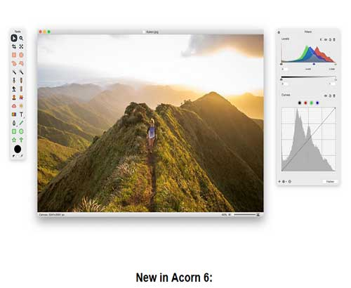 acorn photo editor